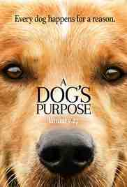 Poster Dogs Purpose 2017 Lasse Hallstrm